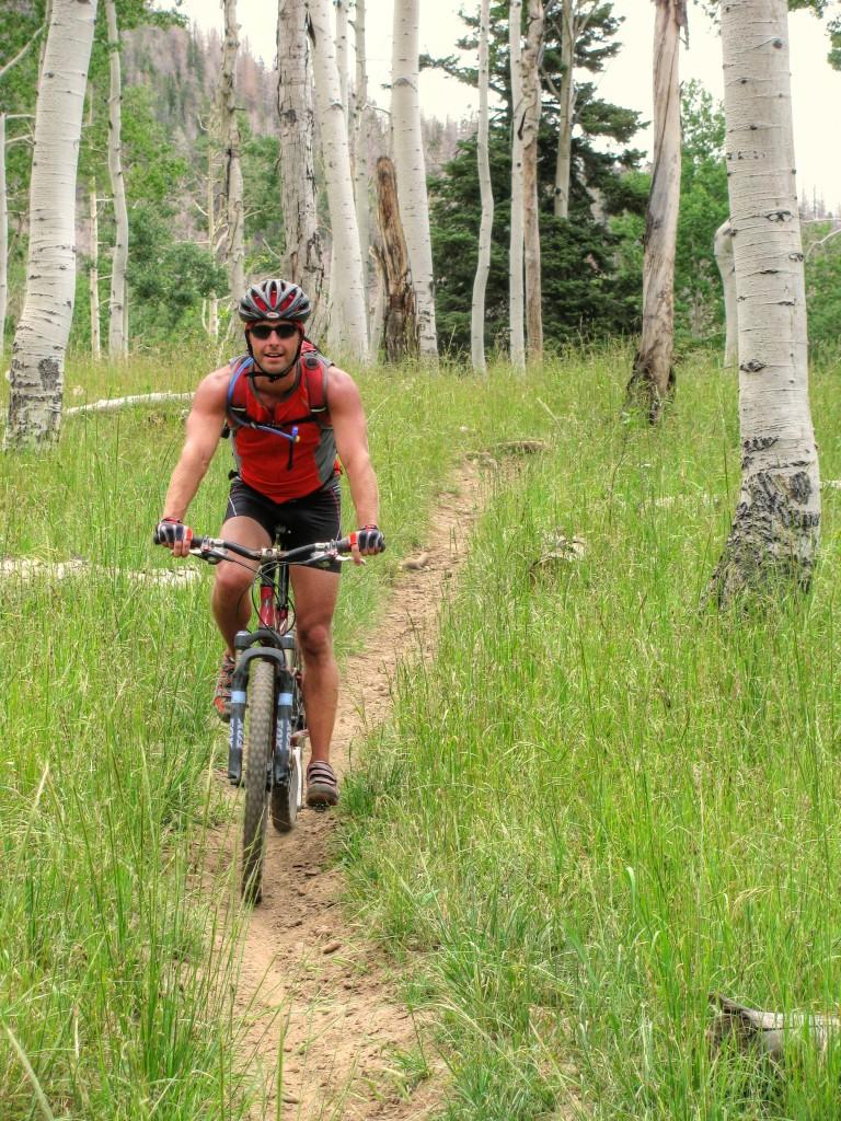 Virgin River Rim Mountain Bike Trail